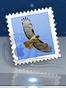 Mail のアイコン