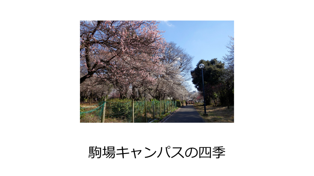 24_3_5_j